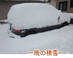 一晩の積雪と車